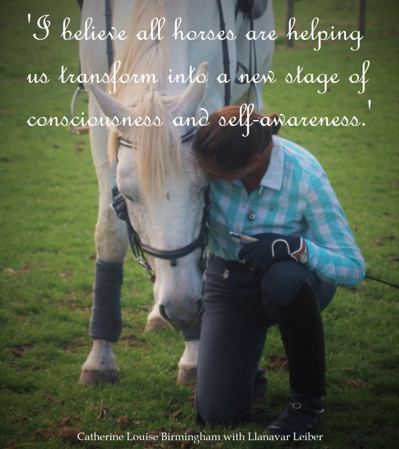Equestrian Blog of the Day: Catherine Louise Birmingham Coaching