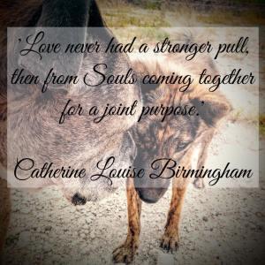 loves pull