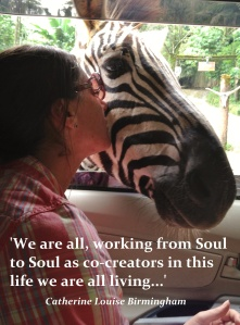 Soul to Soul quote - zebra