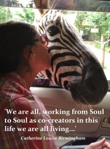 Soul to Soul quote - zebra