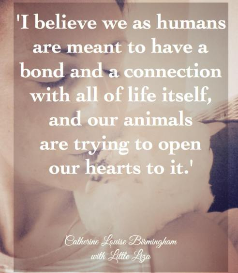 It is not only the evolution and experience humans are having in this life, our fellow Souls in the animal and plant world are here for that purpose too. Their desires are to be heard just as much as ours.