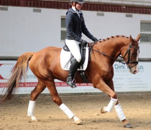 The gracious young man Marvin Engels, showing his dedication to one horse by pursuing her growth from Roll-Kur to classical. Always a smile from this young Knight.